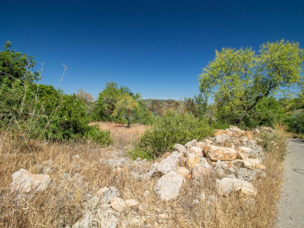 Land rustic santa barbara de nexe (1)