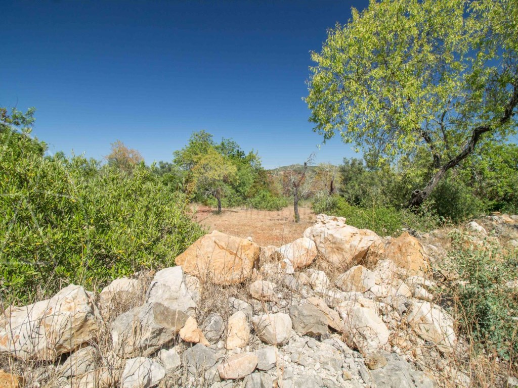 Land rustic santa barbara de nexe (3)