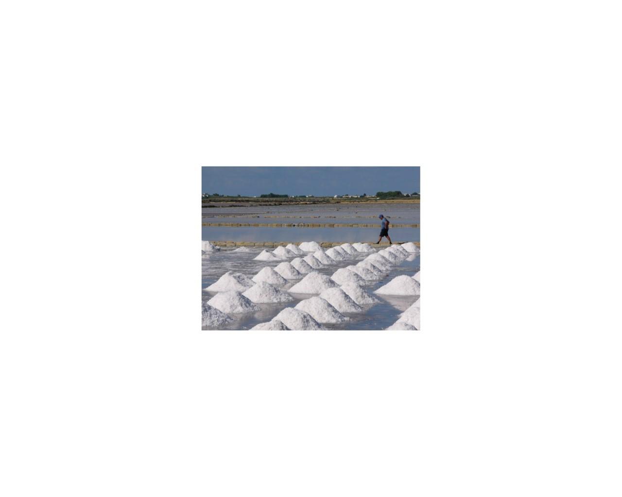 Saltworksen
