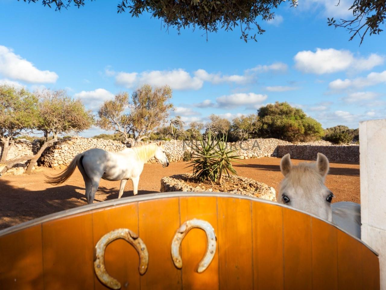 Casa de campo con piscina en Menorca (34 de 41)