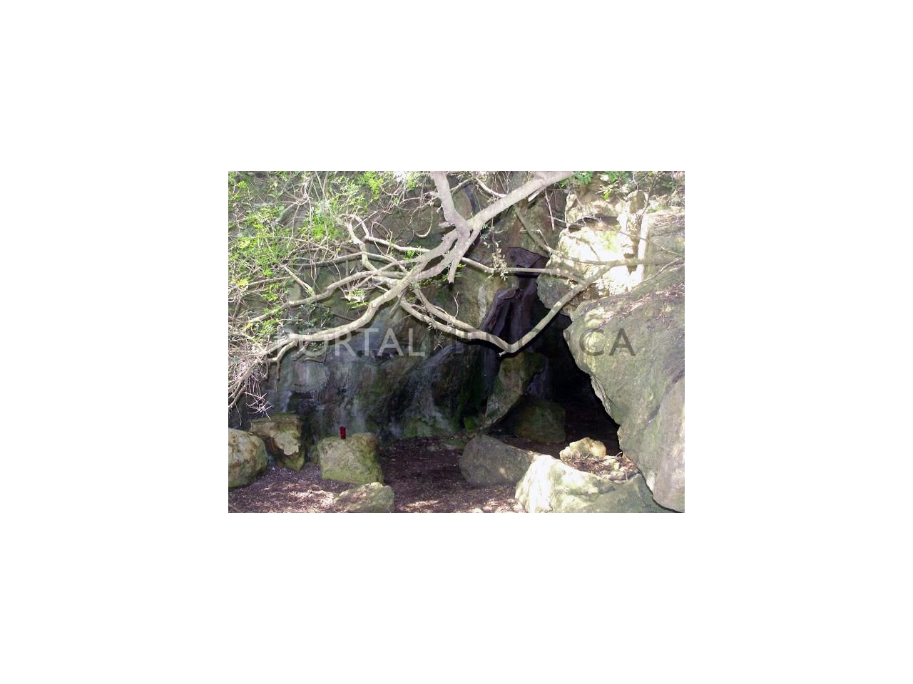 DSC07299 Cova de Ses Bruixes o de Binixems (Alaior) 28-04-2011.JPG