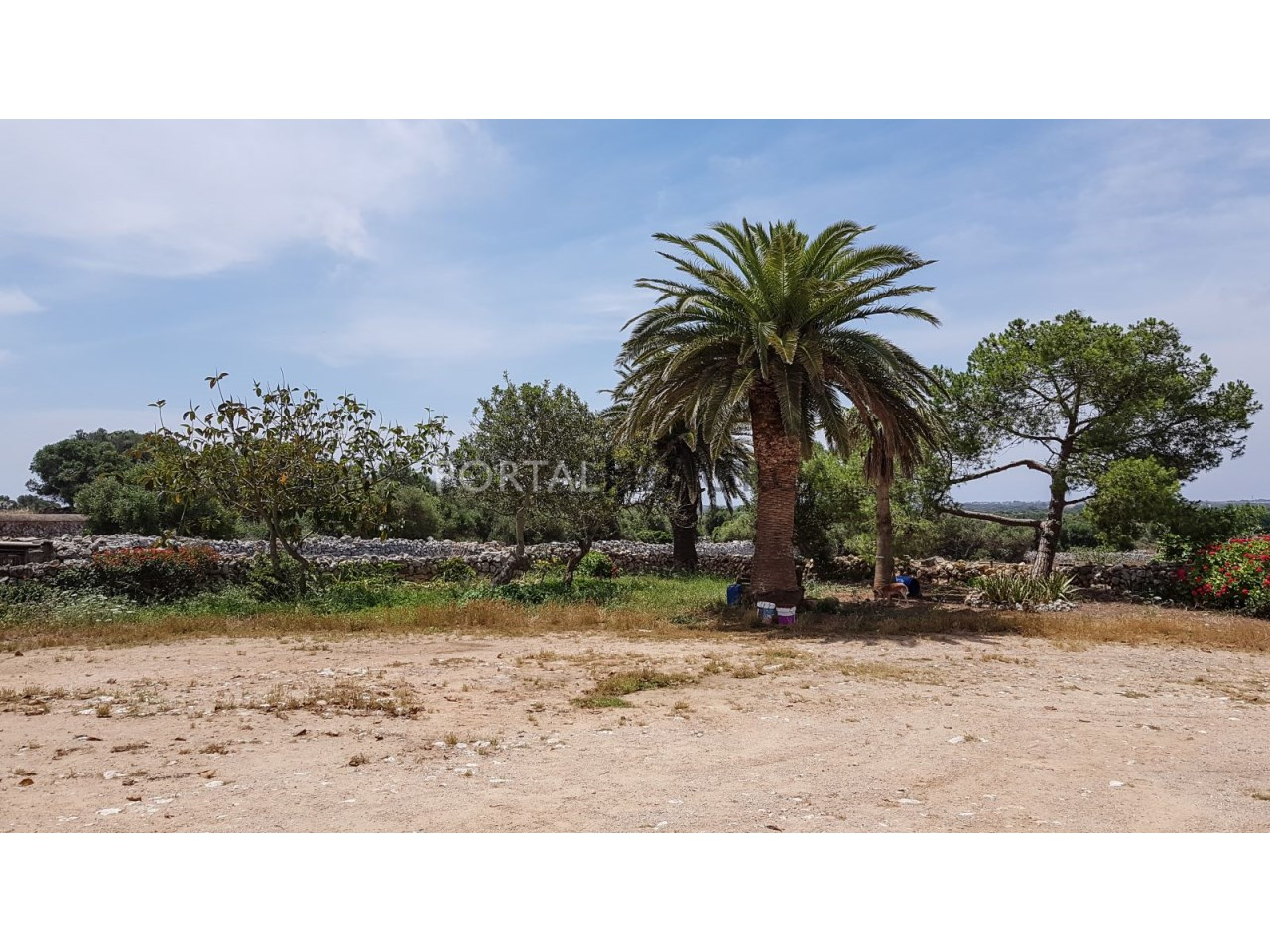 for-sale-farm-menorca (2)