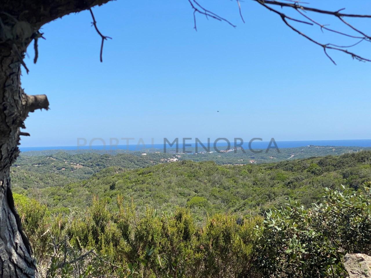 SerraMorena-Parcela-A7-2