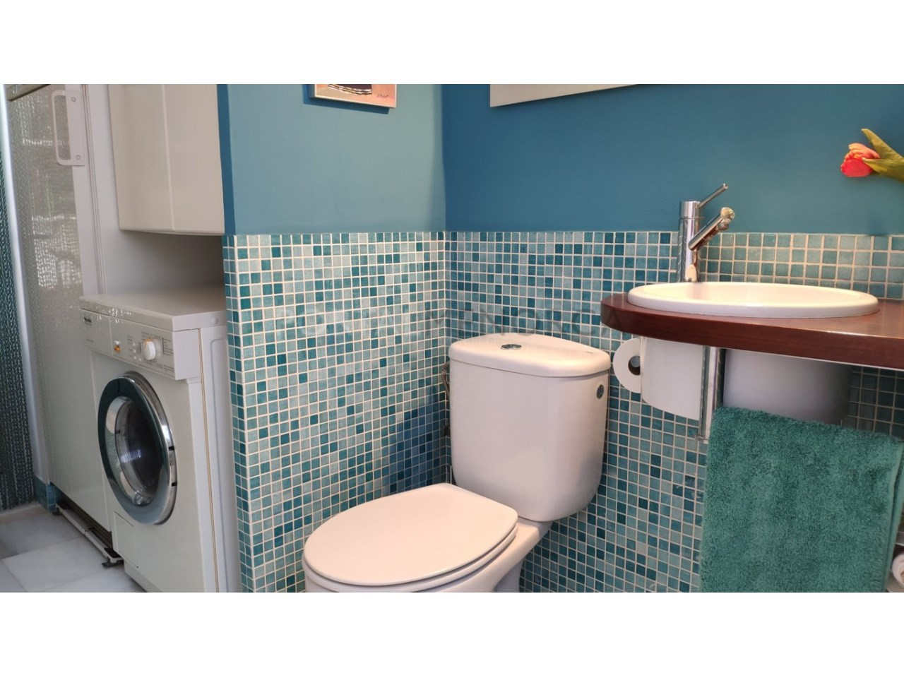 Villa for sale in Son Blanc- toilet laundry