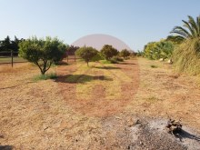 Farm with House sale in Silves, Algarve%47/76