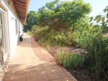 Farm with House sale in Silves, Algarve%50/76