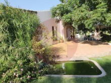 Farm with House sale in Silves, Algarve%56/76