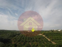 Farm-Sale-Porches-Lagoa, Algarve%19/19