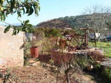 Farm-for sale-Portimao, Algarve%5/26