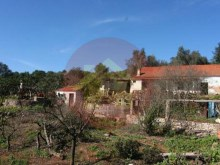 Farm-for sale-Portimao, Algarve%10/26