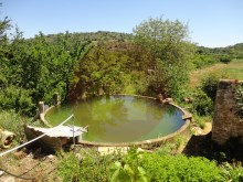 Farm-for sale-Portimao, Algarve%20/26