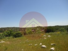 Farm-for sale-Portimao, Algarve%23/26
