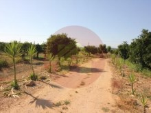 Farm-Sale-Lagoa, Algarve%2/26