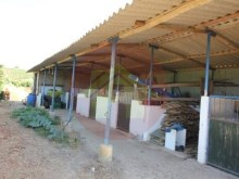 Farm-Sale-Lagoa, Algarve%3/26