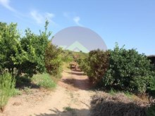 Farm-Sale-Lagoa, Algarve%6/26