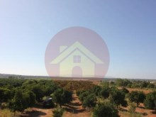 Farm-Sale-Lagoa, Algarve%9/26