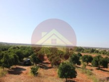 Farm-Sale-Lagoa, Algarve%11/26