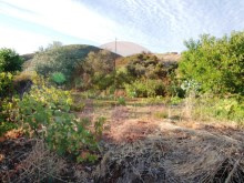 Farm-for sale-Portimao, Algarve%5/10