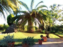 House-For Sale-Tormentor, Silves %3/42