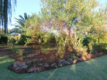 House-For Sale-Tormentor, Silves %11/42