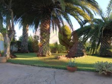 House-For Sale-Tormentor, Silves %21/42