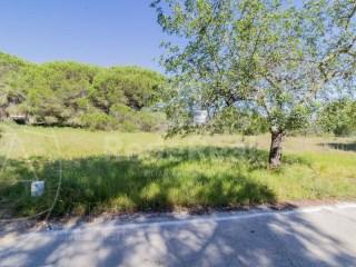 Rural Land Quarteira - For sale