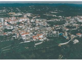 Terreno São Brás de Alportel - Venda