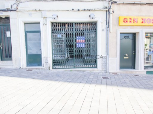 Commercial for Rent in Zona Centro - M8219