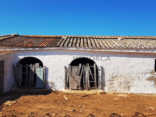 Cattle Ranch for Sale in Sant Climent - V2787