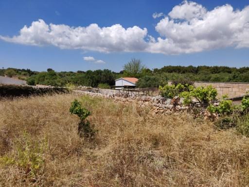 Land in Sant Lluís Ref: S2729 1