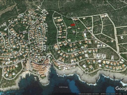 Plot in S'Atalaia Ref: S175 1