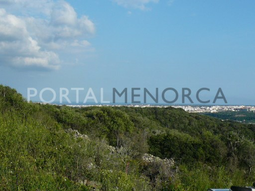 Plot in Serra Morena Ref: SHM1525 1