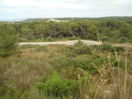 Plot in Coves Noves Ref: H2322 1