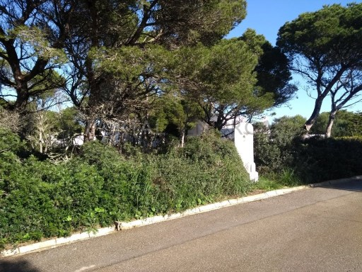 Plot in Cala Morell Ref: C35 1