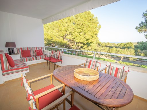 Apartment in Coves Noves Ref: T1214 1