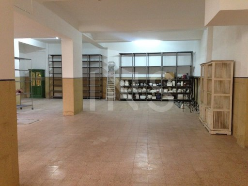 Warehouse in excellent conditions, in open space, with 198