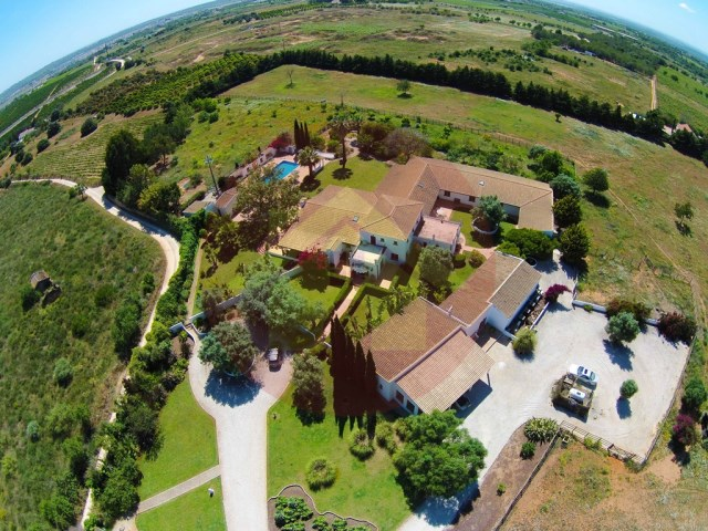 Farm with House sale in Silves, Algarve