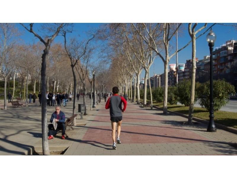 Pis a la venda en Sant Andreu de Barcelona 29