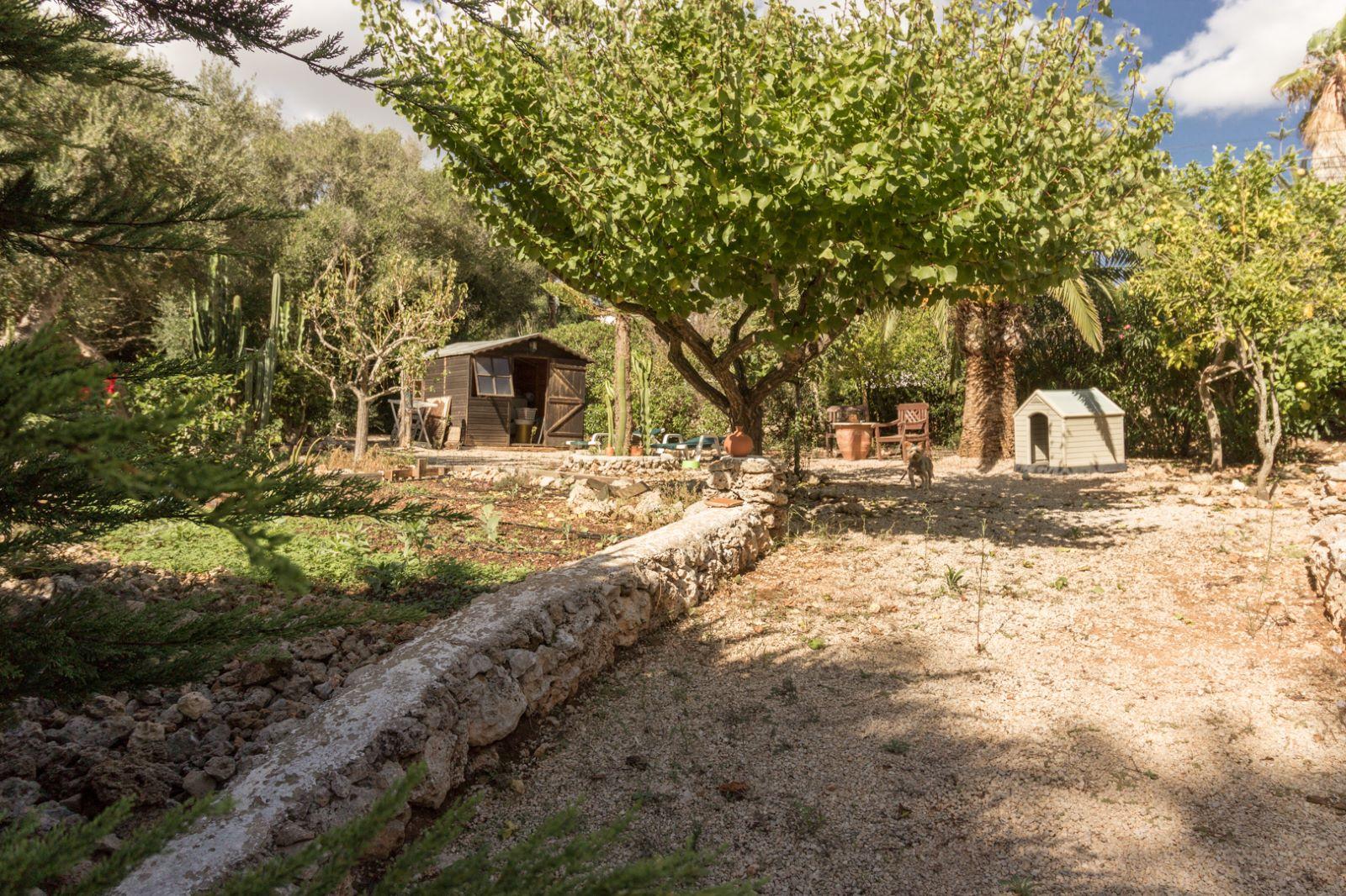 Villa in Binixica Ref: M7652 14