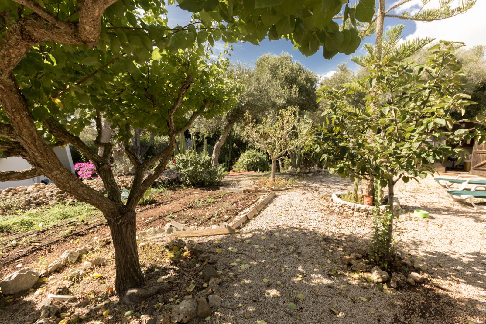 Villa in Binixica Ref: M7652 2