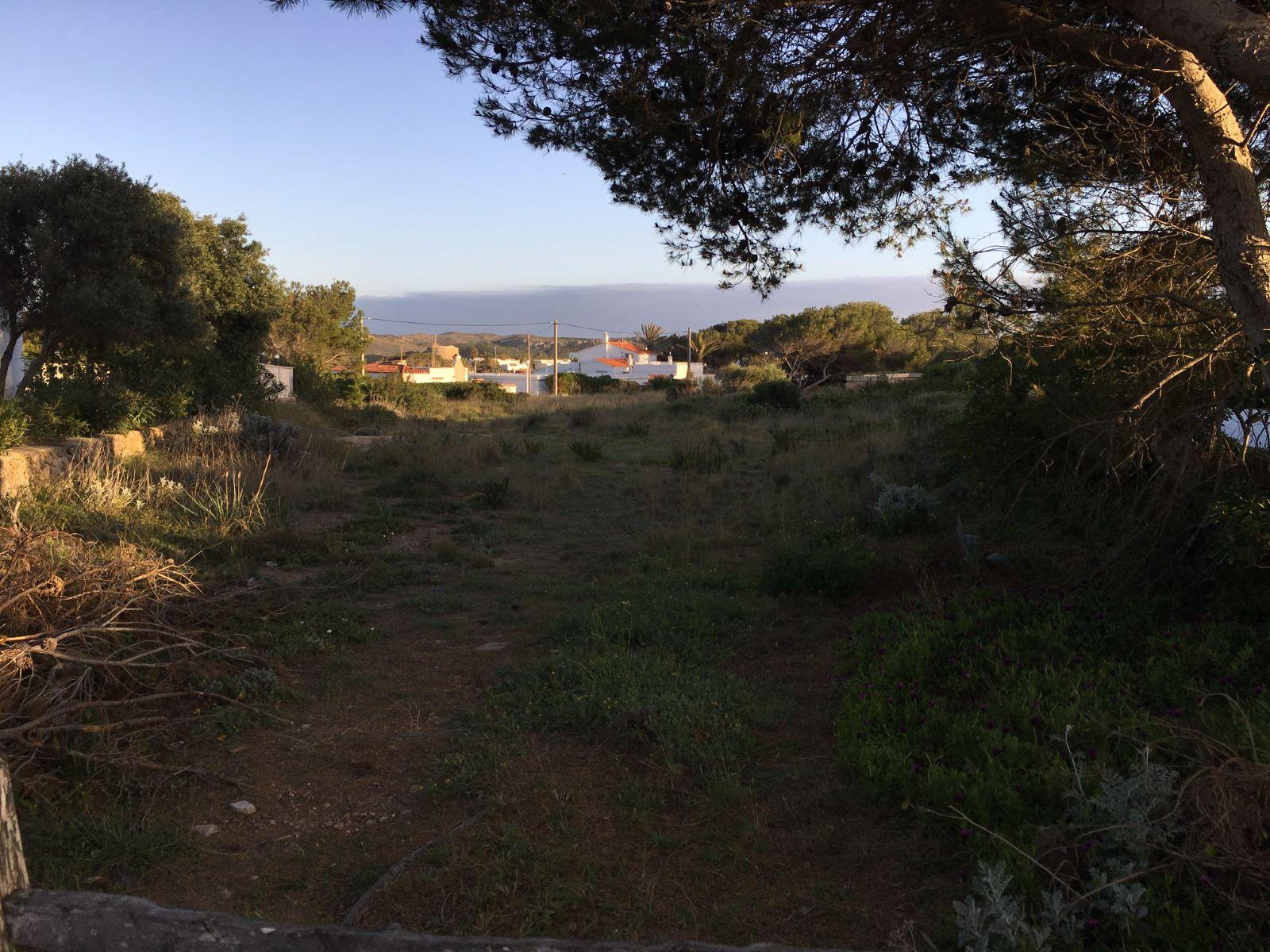 Plot in Na Macaret Ref: M8117 4