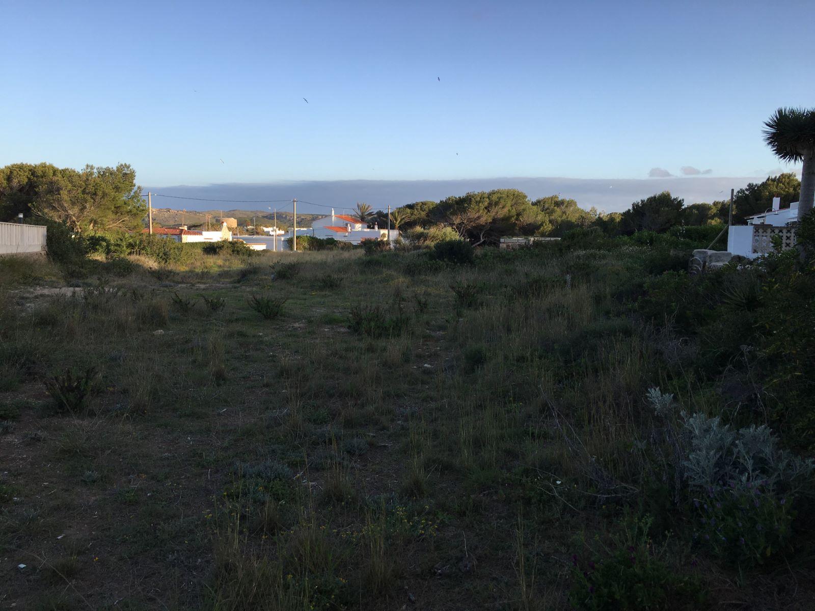 Plot in Na Macaret Ref: M8117 7