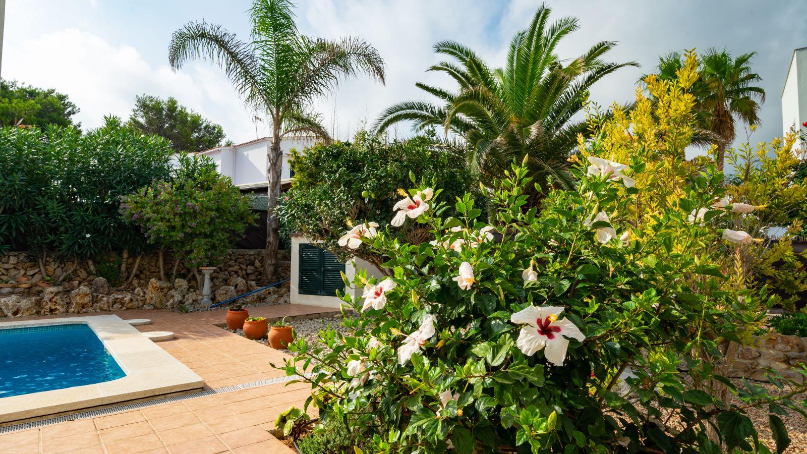 Villa in Addaia Ref: V2799 15