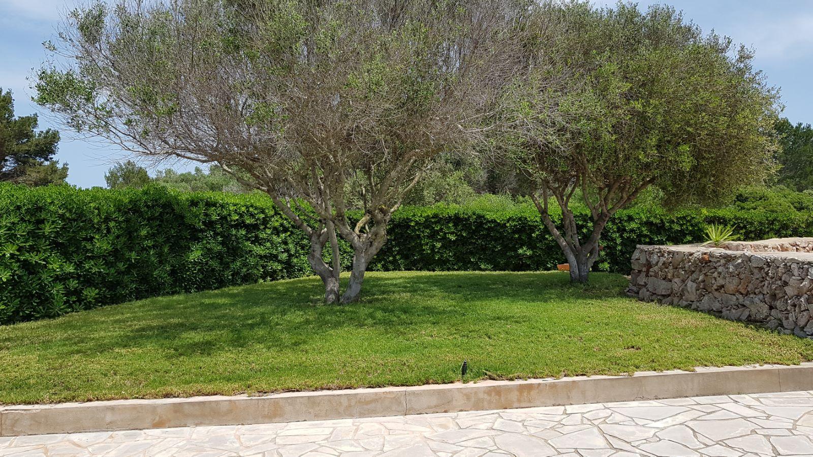 Villa in Cala Canutells Ref: VT2019 7