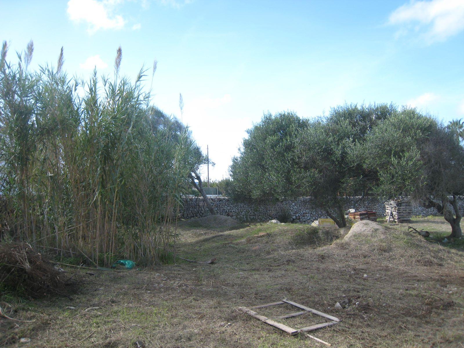 Parcela en Sant Lluís Ref: VM1306 5