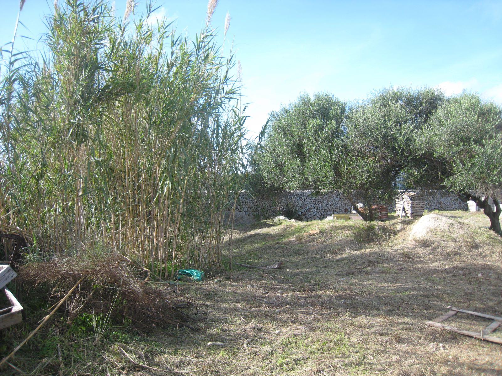 Parcela en Sant Lluís Ref: VM1306 8