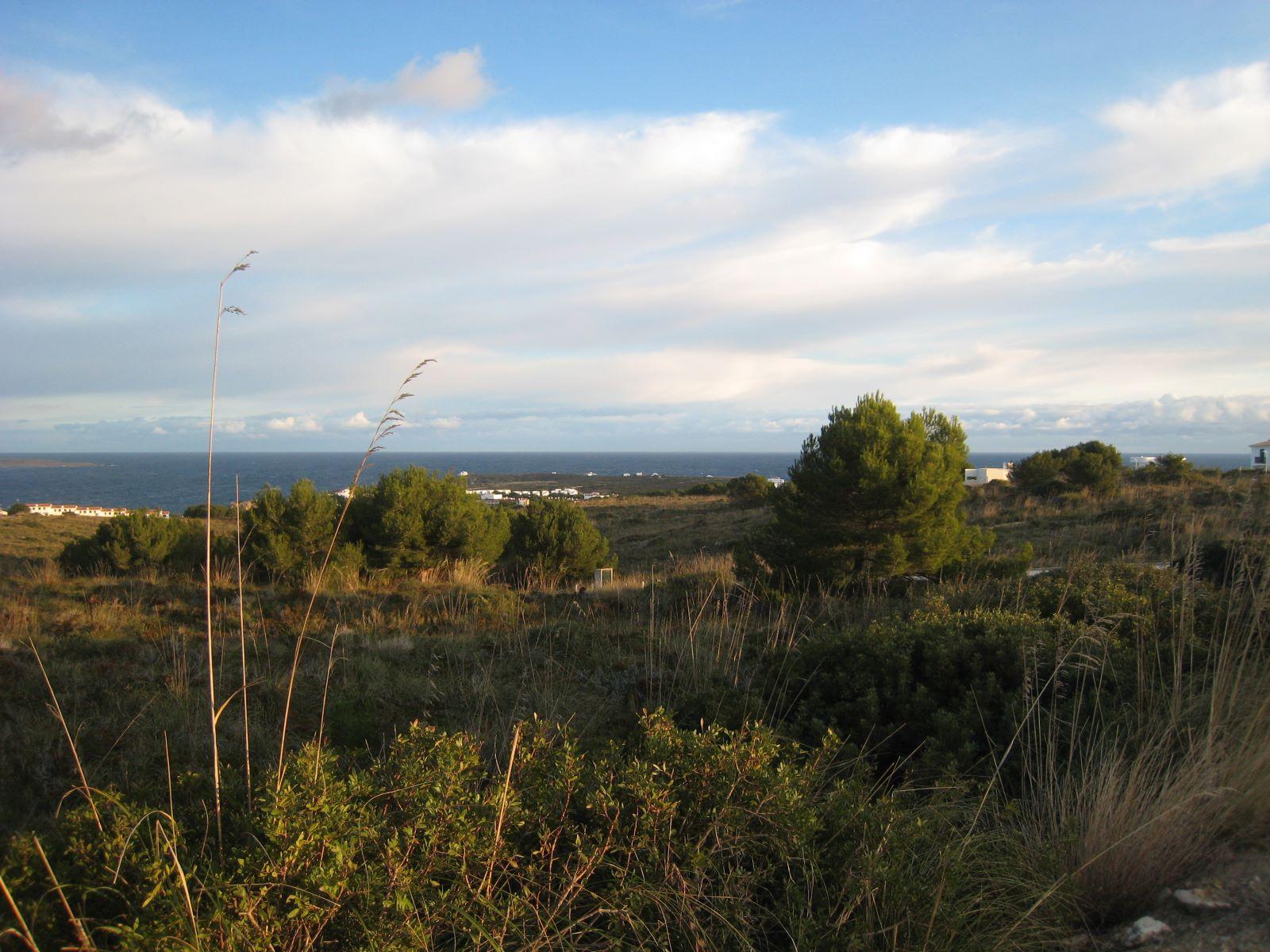 Bauparzelle in Coves Noves Ref: V2261 5