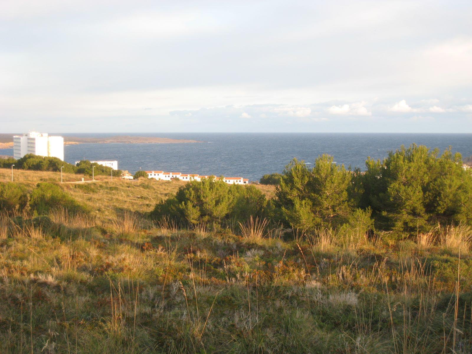 Bauparzelle in Coves Noves Ref: V2261 6