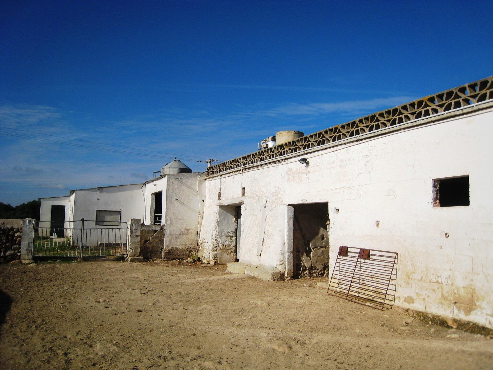 Agricultural property in Es Mercadal Ref: V2600 12