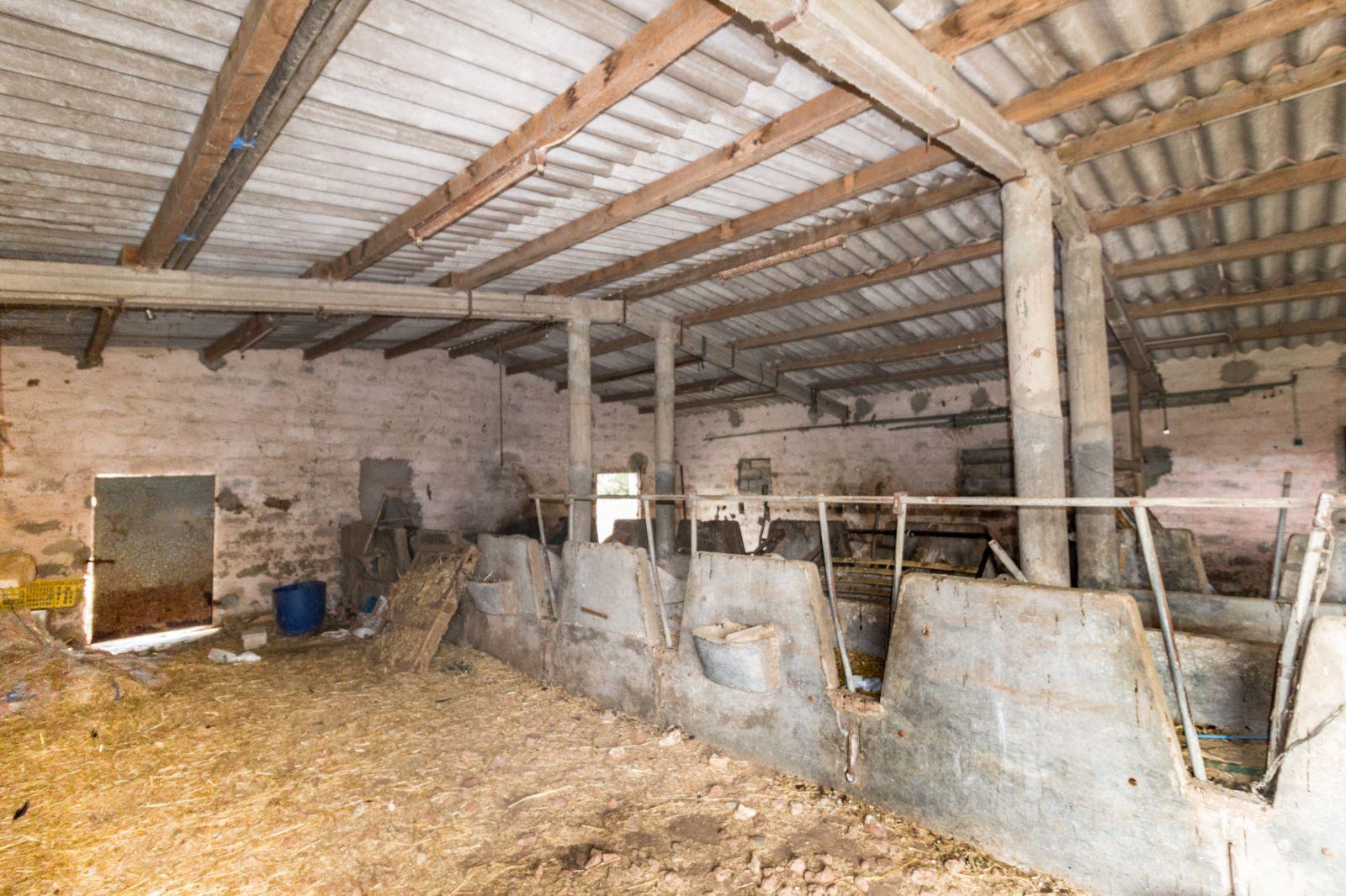 Agricultural property in Es Mercadal Ref: V2600 16